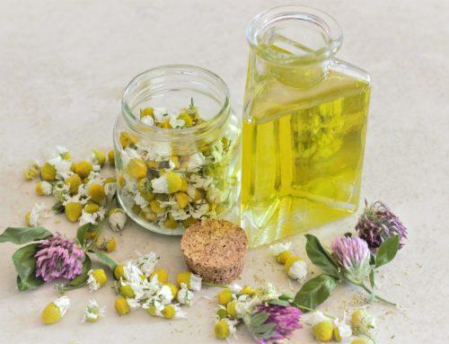 O que é adoecer e se curar para a homeopatia?