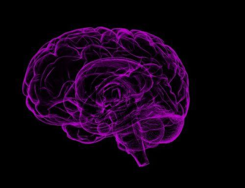 Sabe onde nasce a ansiedade no cérebro?